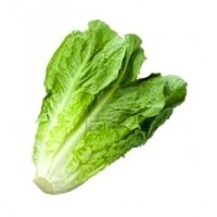 Romaine lettuce (one)