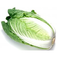 Napa cabbage (one)
