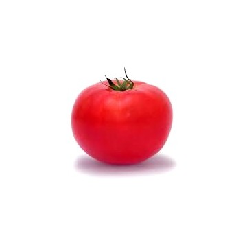 Red tomato (one)