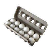 Store brand eggs (dz) extra-large