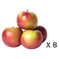 Mcintosh apple (bag of 8)