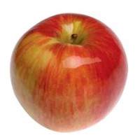 Cortland apple (one)